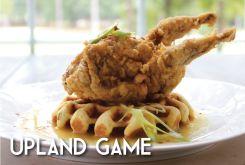 Upland Game